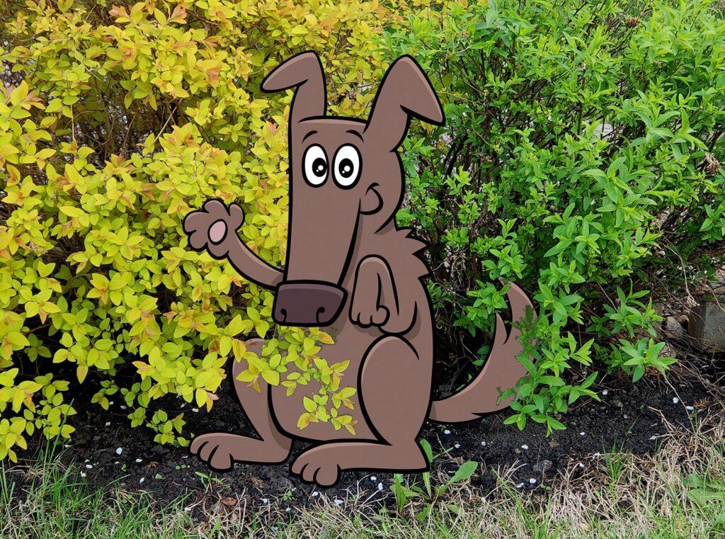 Собака-Погуляка