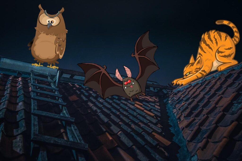 На мягких крыльях ночи